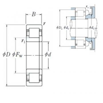 75 mm x 160 mm x 55 mm  NSK NUP2315 ET cylindrical roller bearings