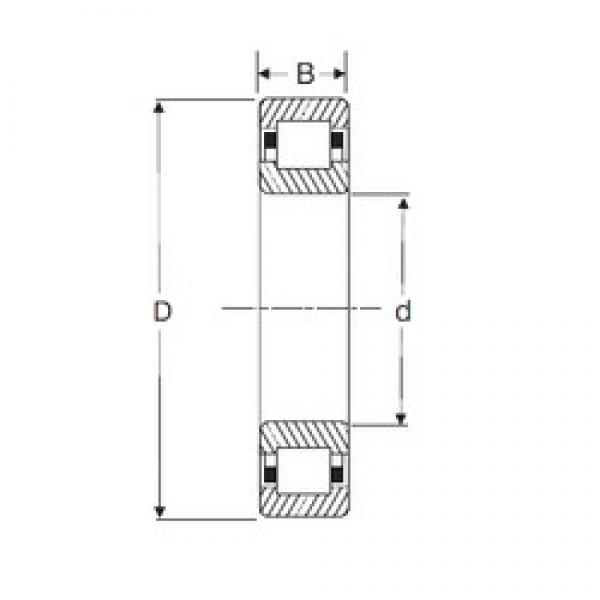75 mm x 160 mm x 55 mm  SIGMA NUP 2315 cylindrical roller bearings #1 image